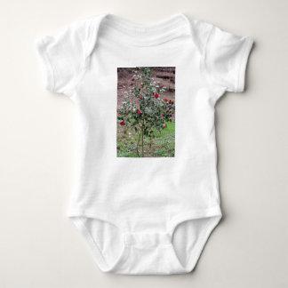 Ancient cultivar of Camellia japonica flower Baby Bodysuit