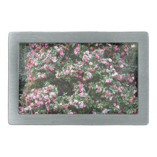 Ancient cultivar of Camellia japonica flower Belt Buckle