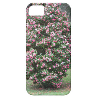 Ancient cultivar of Camellia japonica flower Case For The iPhone 5