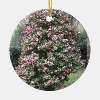 Ancient cultivar of Camellia japonica flower Ceramic Ornament