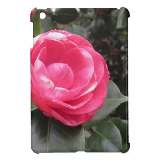 Ancient cultivar of Camellia japonica flower Cover For The iPad Mini