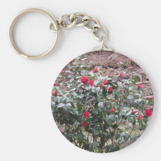 Ancient cultivar of Camellia japonica flower Keychain