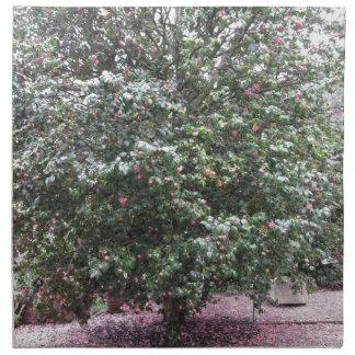 Ancient cultivar of Camellia japonica flower Napkin