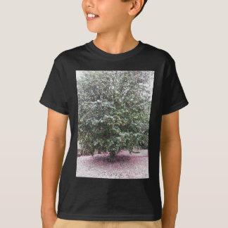 Ancient cultivar of Camellia japonica flower T-Shirt
