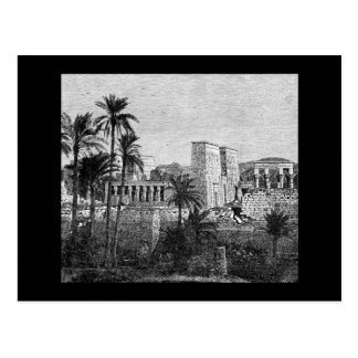 Ancient Egypt Temple Postcard