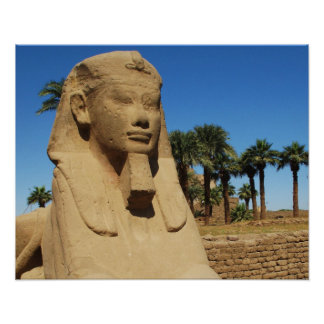 Ancient Egyptian sphinx statue  luxor Egypt Poster