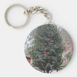 Ancient japanese cultivar of Camellia japonica Keychain