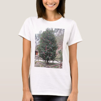 Ancient japanese cultivar of Camellia japonica T-Shirt