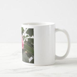 Ancient japanese cultivar of pink Camellia Coffee Mug