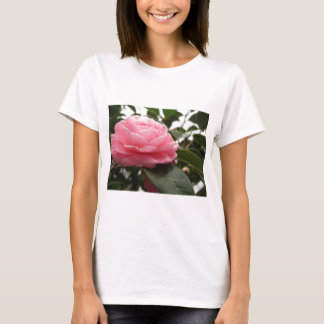 Ancient japanese cultivar of pink Camellia T-Shirt