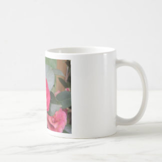 Ancient japanese cultivar of red Camellia japonica Coffee Mug