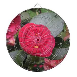 Ancient japanese cultivar of red Camellia japonica Dartboard