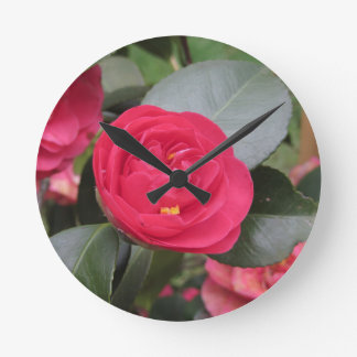 Ancient japanese cultivar of red Camellia japonica Round Clock
