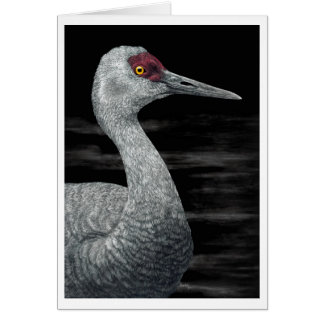 """Ancient Traveler"" - Sandhill Crane Card"