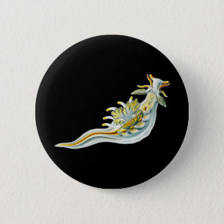 Ancula gibbosa 2 inch round button