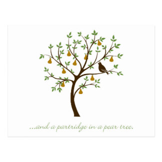 And a partridge in a pear tree postcard