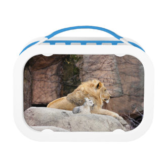And The Lion Lies Down With The Lamb Lunch Box