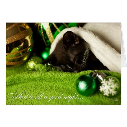 And To All A Good Night Kitty Card