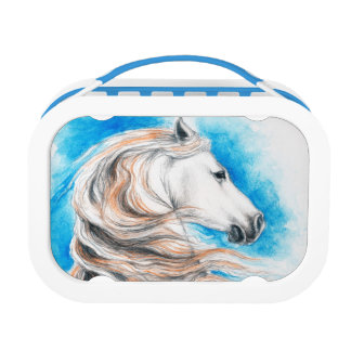 Andalusian Horse Blue Lunch Box