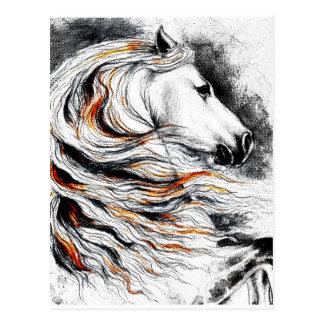 Andalusian Horse Comic Postcard