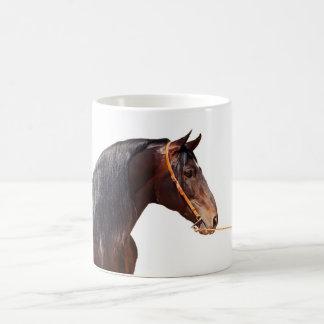 andalusian stallion at white coffee mug