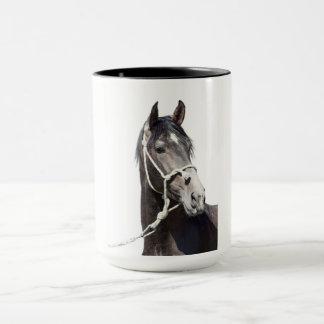 andalusian stallion at white mug