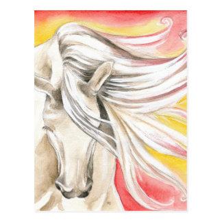 Andalusian Sunshine Horse Postcard