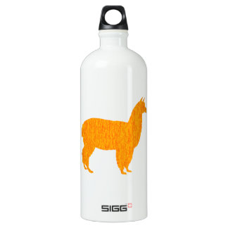 Andean Sun Water Bottle