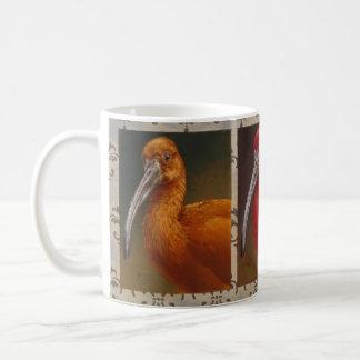 Andrew Denman Scarlet Ibis Mug