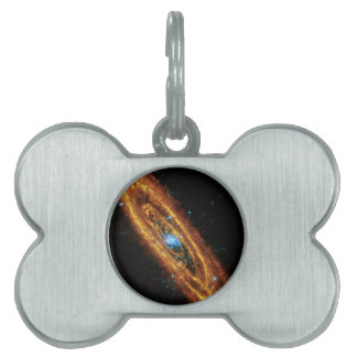 Andromeda in X-Ray and Infrared Pet ID Tags