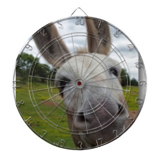 Andy Dartboard