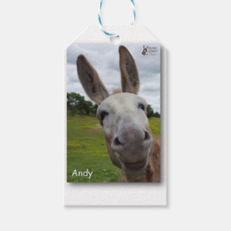 Andy Gift Tags