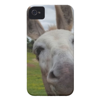 Andy iPhone 4 Cover