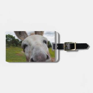 Andy Luggage Tag