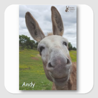 Andy Square Sticker