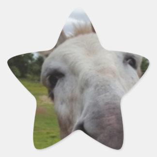 Andy Star Sticker
