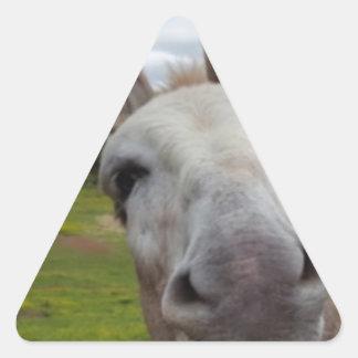Andy Triangle Sticker
