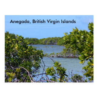 Anegada BVI Postcard