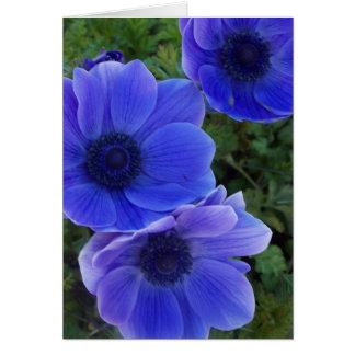 Anemones Card
