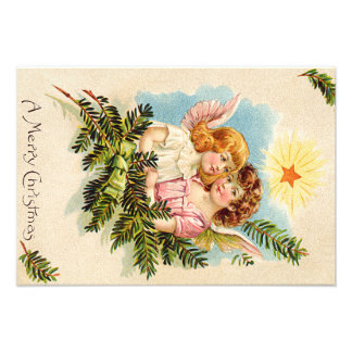 Angel Cherub Evergreen Bough Heaven Photo