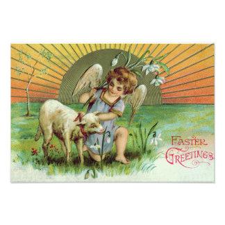Angel Cherub Sun Lamb Sheep Photo Art