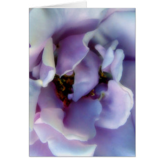 Angel Face Rose Greeting Card