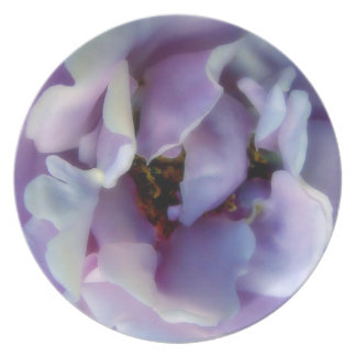 Angel Face Rose Plate
