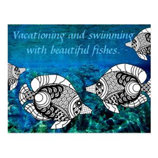 Angel Fish And Ocean Underwater Postcard