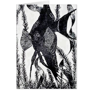 Angel Fish Post Card