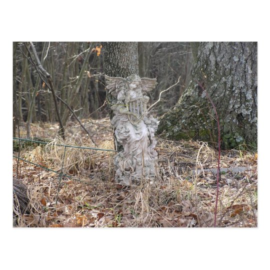 Angel in the Woods Postcard