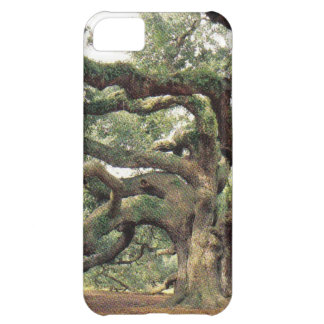 Angel Oak Tree 1,000 years old Cover For iPhone 5C