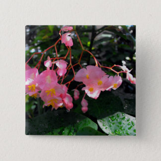 Angel Wing Begonias 2 Inch Square Button