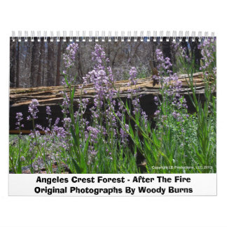 Angeles Crest Forest - After The Fire Calendars