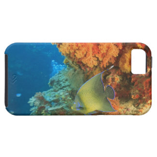 Angelfish swimming near orange soft coral, Bligh Case For The iPhone 5
